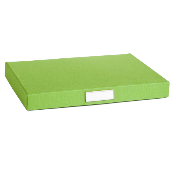 Bigso Library Flat File Green