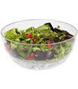 Ice & Go&reg; Salad Bowl