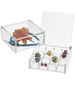 Acrylic Square Hinged-Lid Boxes