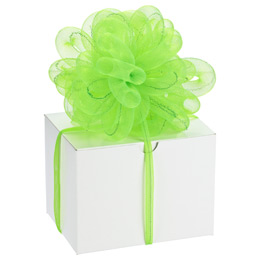 Lime Stretchy Ribbon