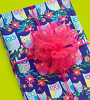 Owls on Blue Gift Wrap