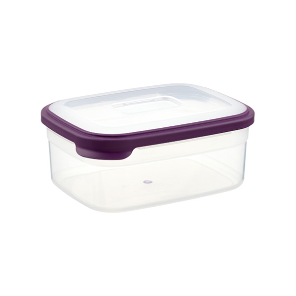 Joseph Joseph 2 qt. Nest Food Storage Purple Lid