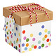 Square Twine Trinket Box Dots Multi