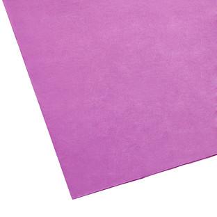 Beet Tissue