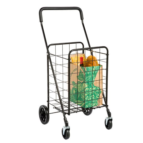 Black Steel Shopping Cart & Liner