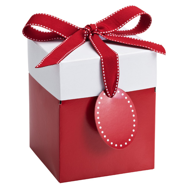 Large Pop-Up Gift Box Red/White