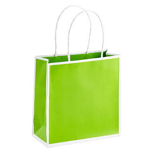 Small Lime Bordered Gift Bag