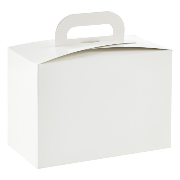 1-Piece Lunch Box