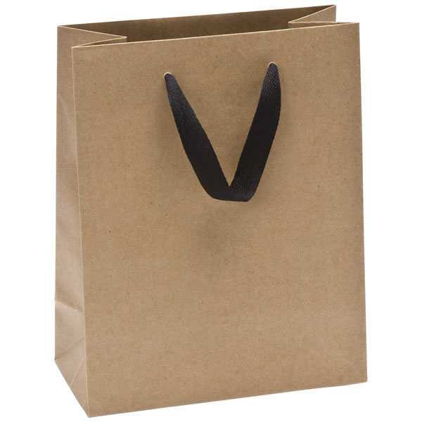Medium Kraft Manhattan Recycled Gift Bag