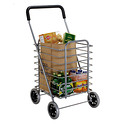 Aluminum Shopping Cart & Liner