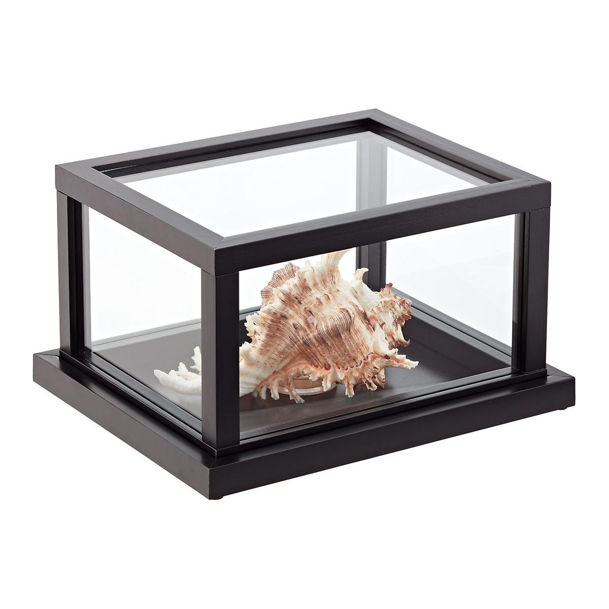solution of mini case of prairie home stores Puppies for sale in prairie home on ypcom see reviews, photos, directions, phone numbers and more for the best pet stores in prairie home, mo.