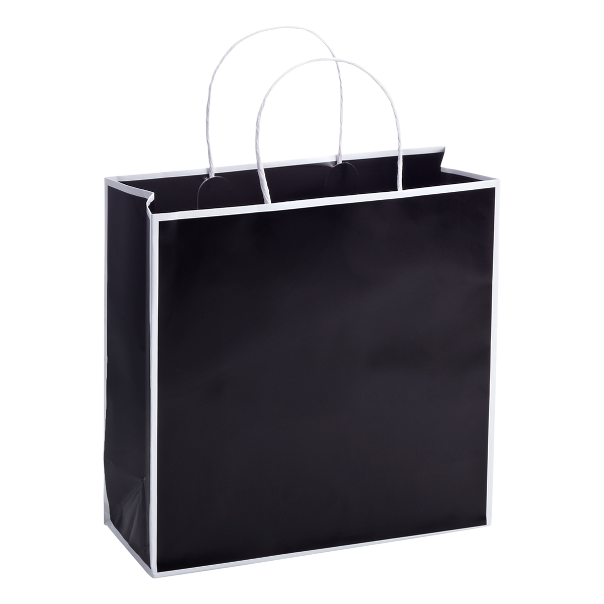 Medium Bordered Black Gift Bag