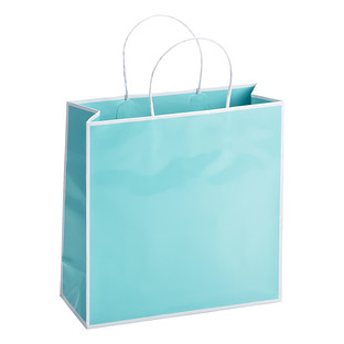 Medium Bordered Light Aqua Gift Bag