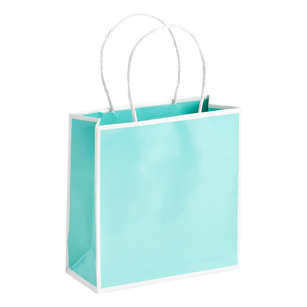 Small Bordered Aqua Gift Tote