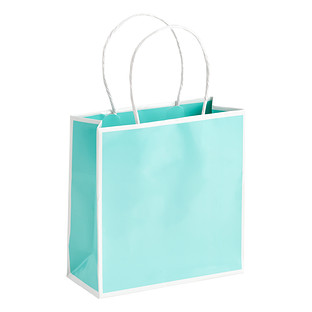 Small Bordered Aqua Gift Bag