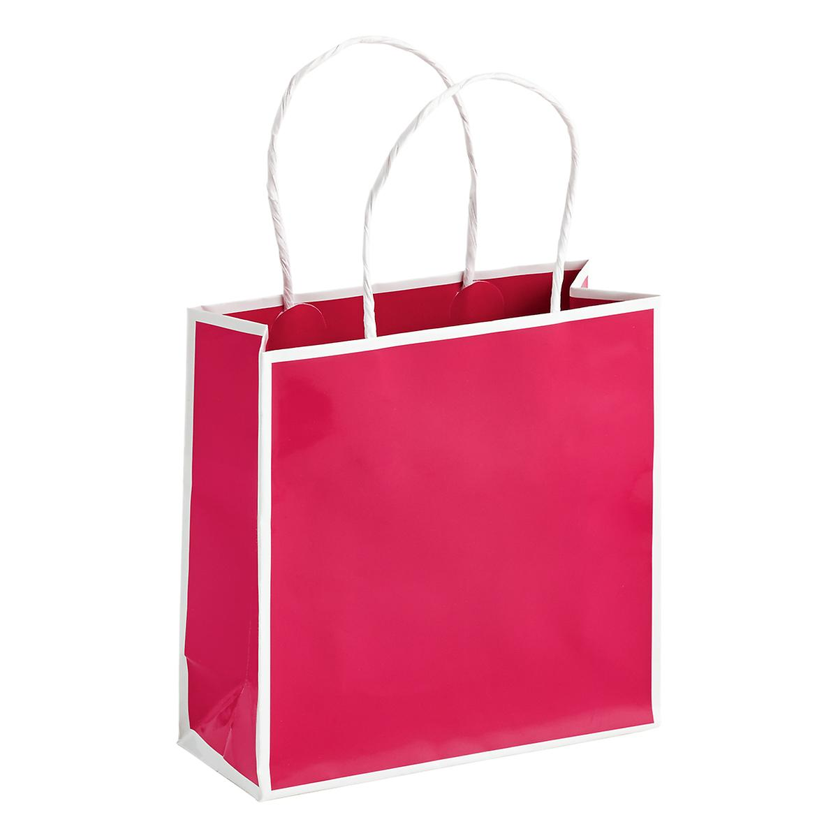 Small Bordered Fuchsia Gift Tote