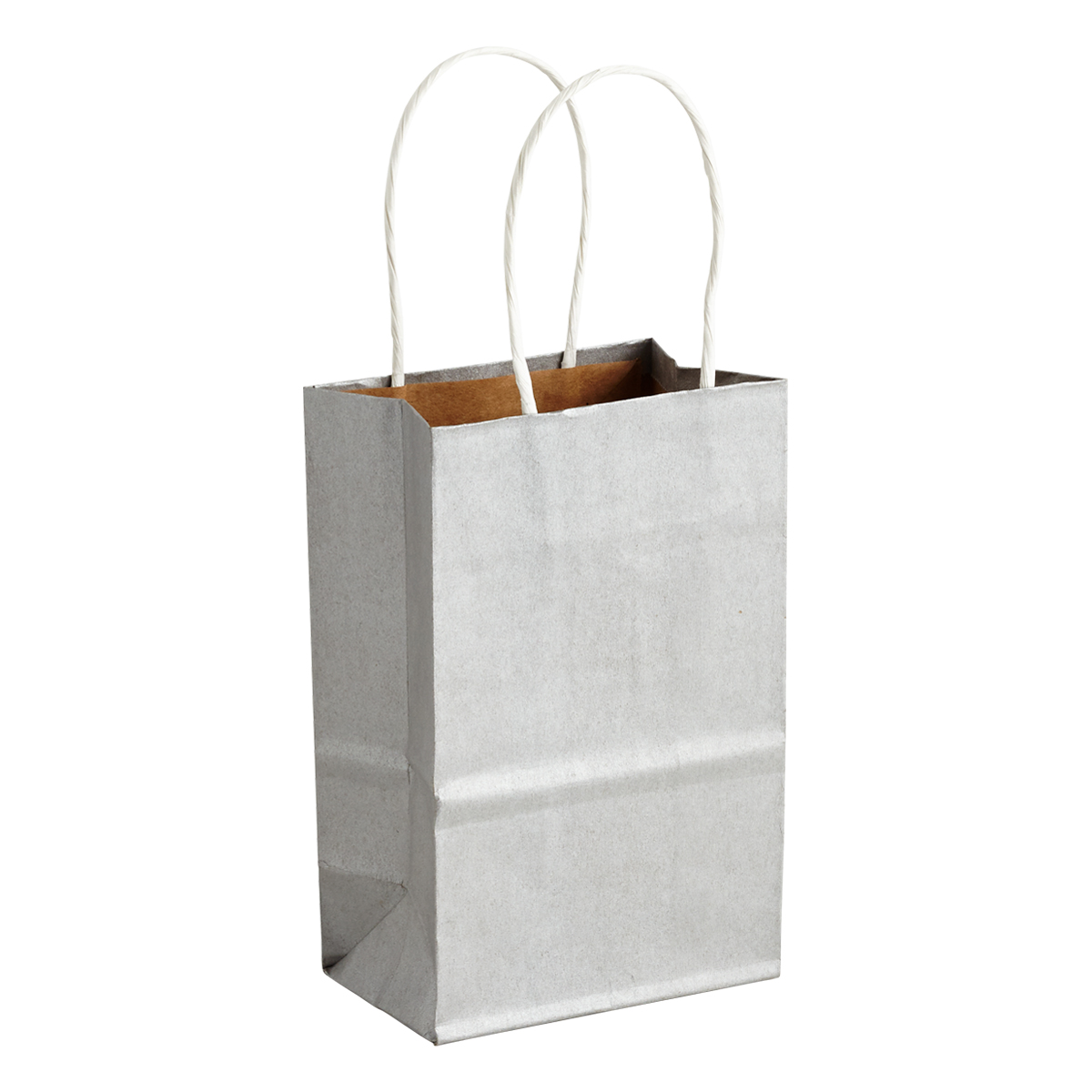 Small Silver Gift Bag