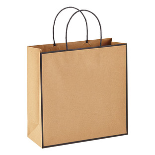 Medium Kraft Bordered Gift Bag
