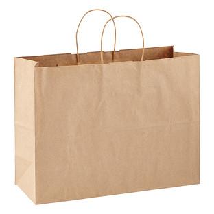 Large Brown Kraft Gift Bag