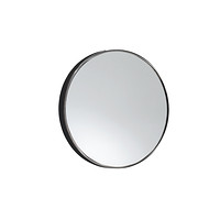 Suction Magnification Mirror