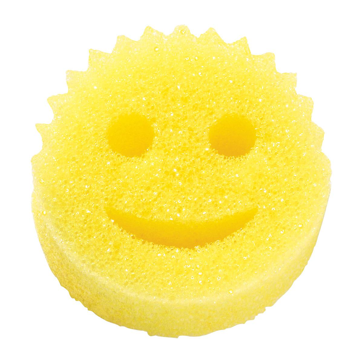 Scratch Free Scrub Daddy The Container Store