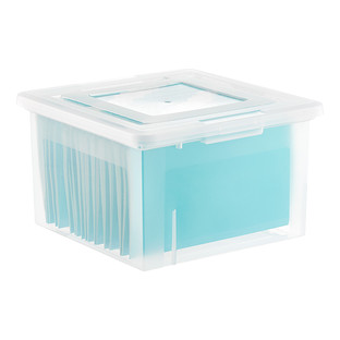 Iris Letter/Legal File Box | The Container Store