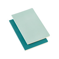 Large Green Moleskine Volant Notebooks