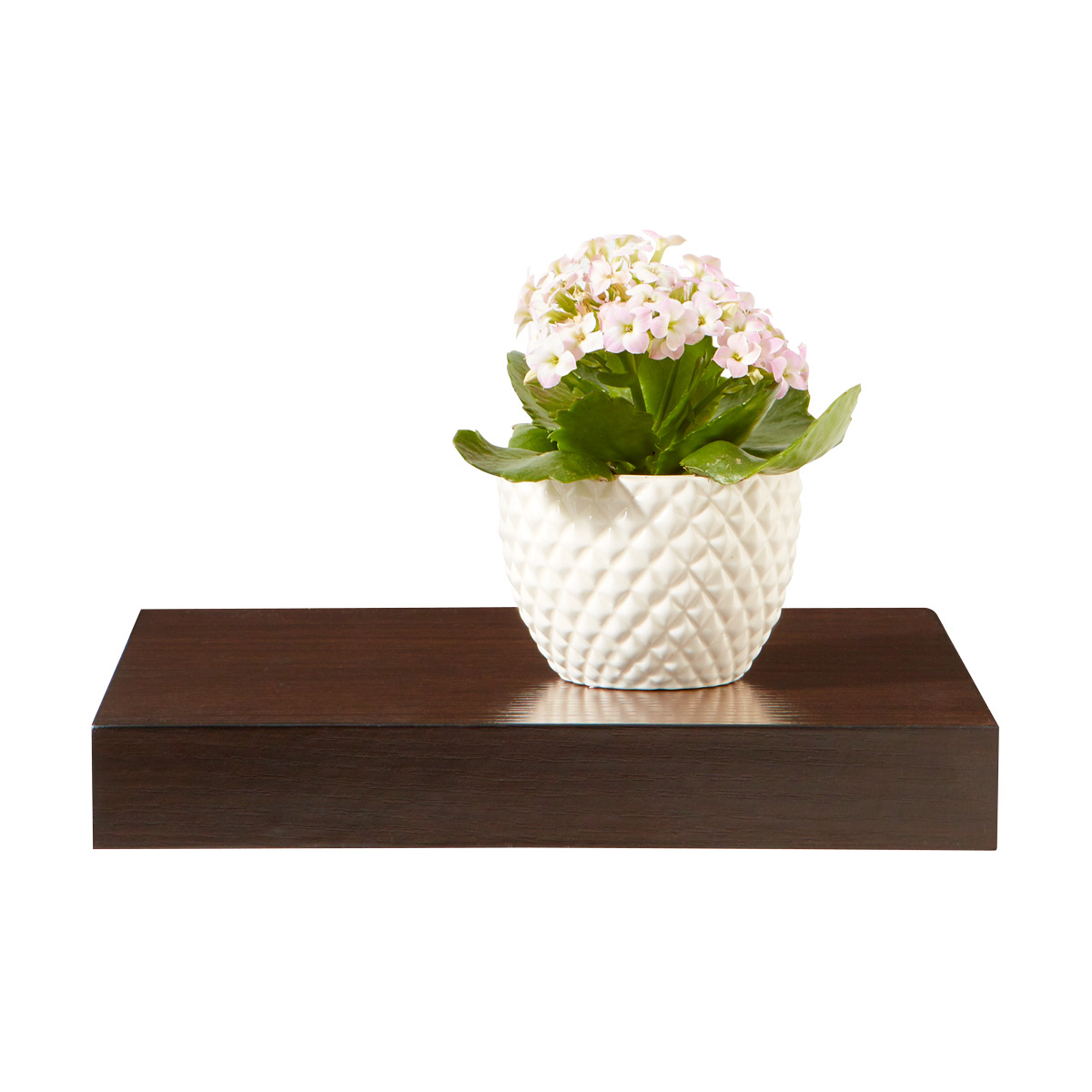 Walnut Floating Display Shelf