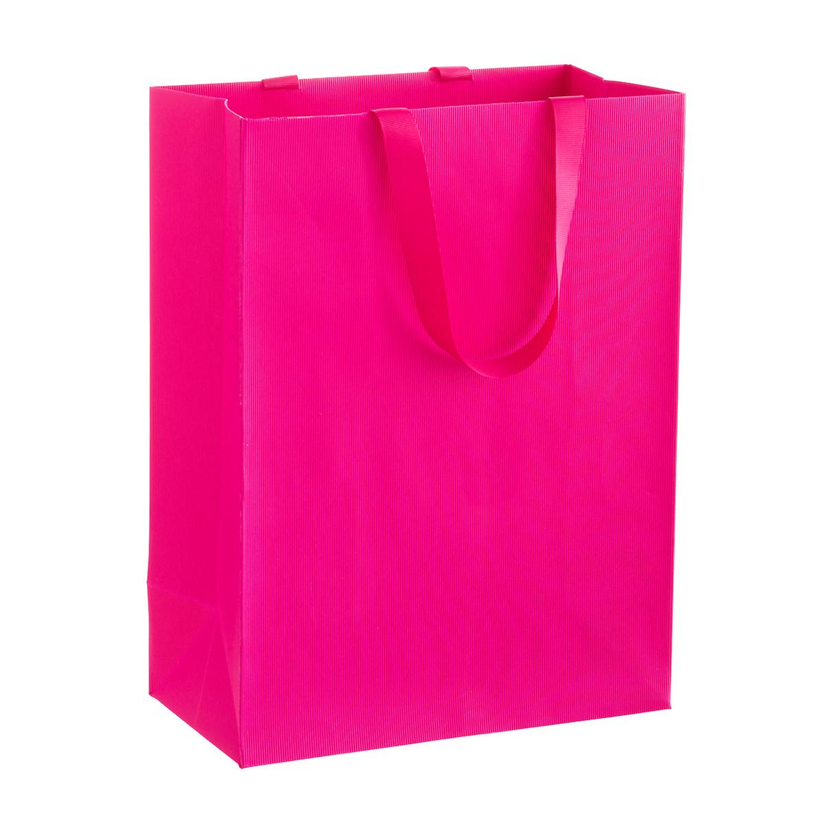 Solid Fuchsia Large Gift Bag