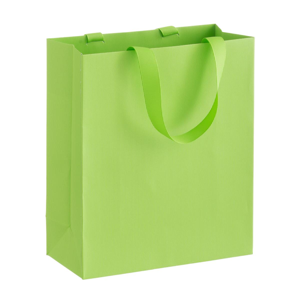 Solid Lime Small Gift Bag