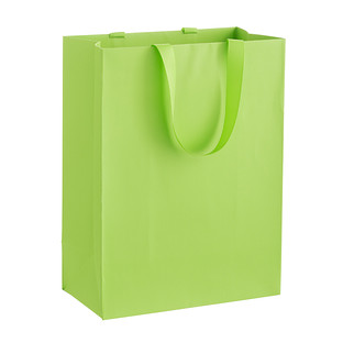 Solid Lime Large Gift Bag