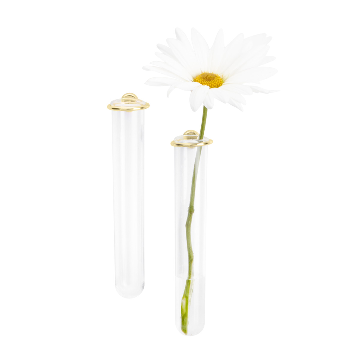 Three by Three Gold Magnetic Flower Vase