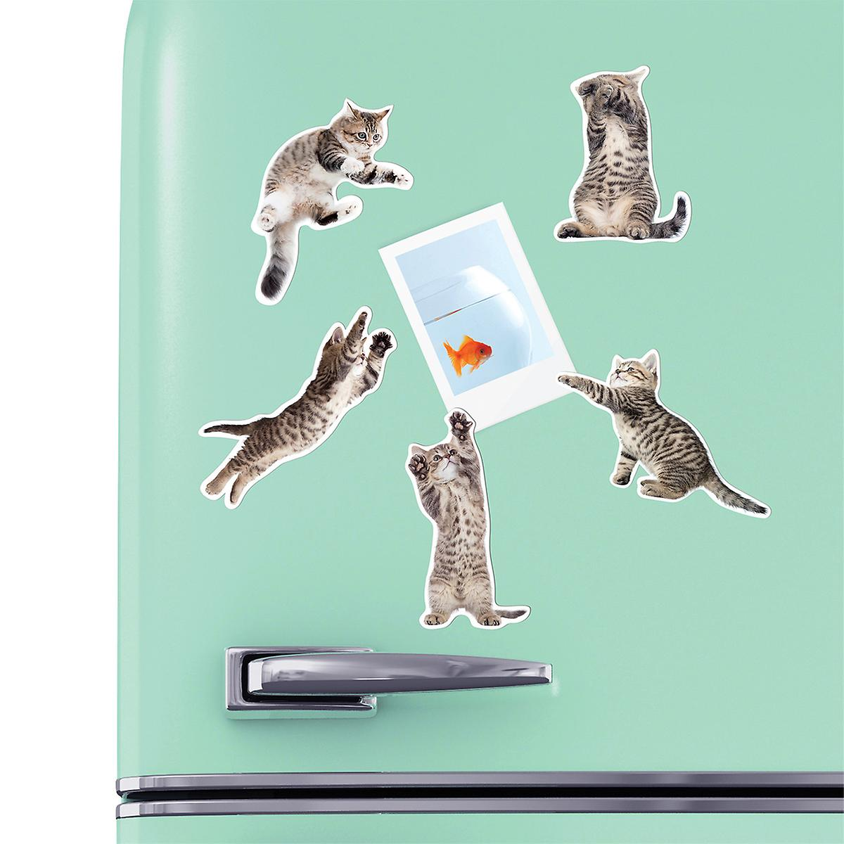 Action Cats Magnets