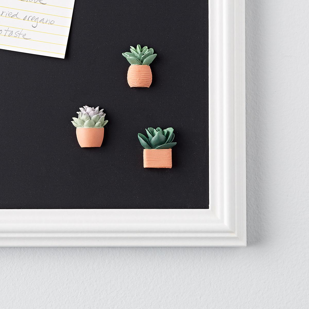 Terracotta Succulent Magnets