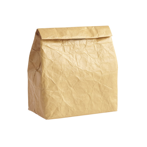Reusable Tyvek~ Paper Bag