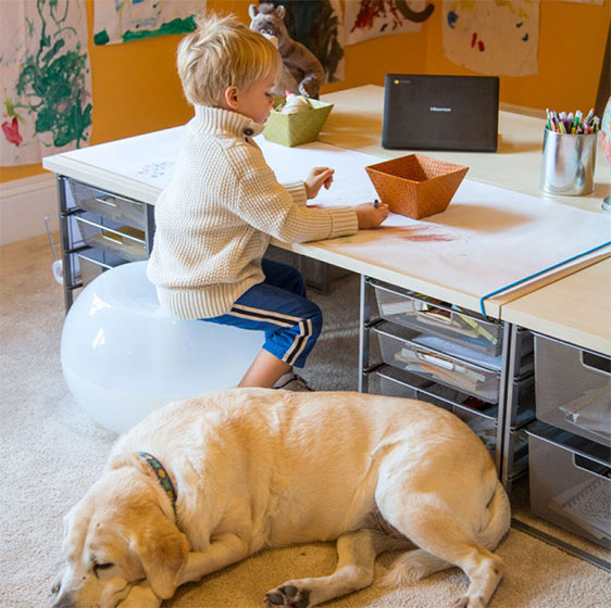 Kid's Adjustable Elfa Desk with Platinum Drawer Units